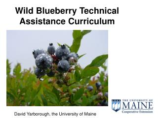 Wild Blueberry Technical Assistance Curriculum