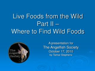 Live Foods from the Wild Part II – Where to Find Wild Foods