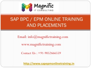 sap bpc online training and placements | magnific training