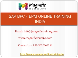 sap bpc online training india  | magnific training