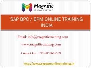 sap bpc online training india  | magnific training