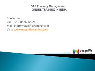 SapTreasuryandRiskManagementonlineindia@magnifictraining.com