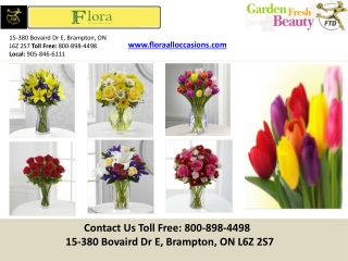 Buy Online Flowers Brampton | Greater Toronto Area | Call Us