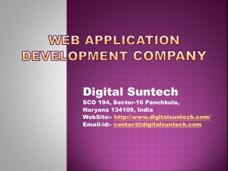 Web Application Development Company - Digital Suntech