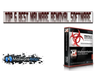 Top 4 Best Malware Removal Software