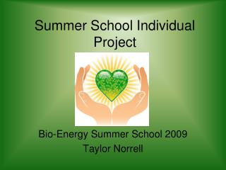 Summer School Individual Project