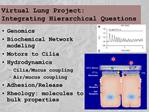 Virtual Lung Project: Integrating Hierarchical Questions