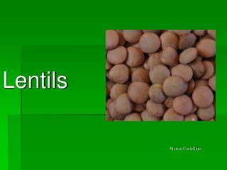 Lentils Marisa Castellano Marisa Castellano