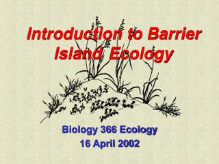 Introduction to Barrier Island Ecology