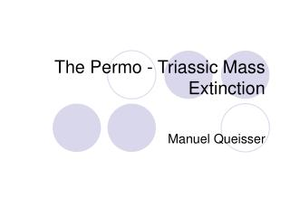 The Permo - Triassic Mass Extinction