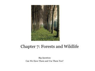 Chapter 7: Forests and Wildlife