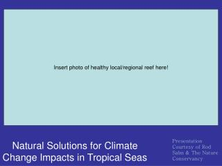 Natural Solutions for Climate Change Impacts in Tropical Seas