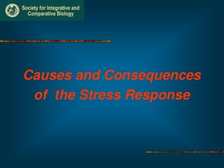 Causes and Consequences of the Stress Response
