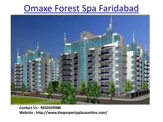 Omaxe Project in Faridabad
