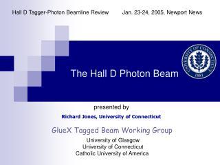 The Hall D Photon Beam