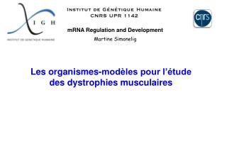 mRNA Regulation and Development