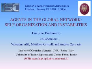 AGENTS IN THE GLOBAL NETWORK: SELF-ORGANIZATION AND INSTABILITIES