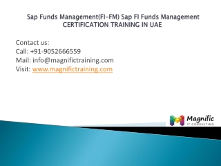 Sap Funds Management (FI-FM)certification training in uae