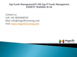 Sap Funds Management (FI-FM)experts training in uk
