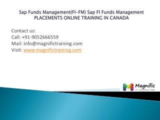 Sap Funds Management (FI-FM)placements training canada