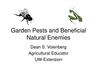 Garden Pests and Beneficial Natural Enemies