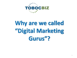 "Why are we called the ""Digital Marketing Gurus"""