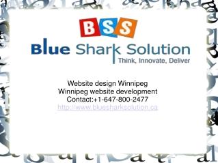 Website design Winnipeg-an increase to internet company tren
