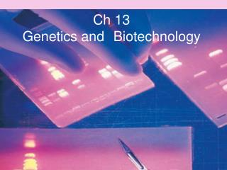 Ch 13  Genetics and 	Biotechnology