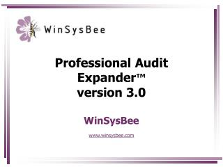 Professional Audit Expander ™ version 3.0 WinSysBee www.winsysbee.com