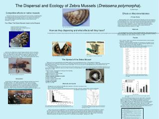 The Dispersal and Ecology of Zebra Mussels ( Dreissena polymorpha ).
