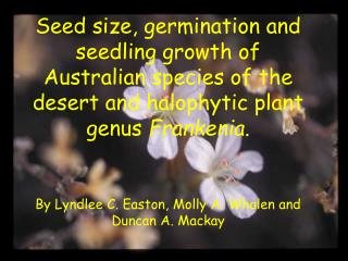 Seed size, germination and seedling growth of Australian species of the desert and halophytic plant genus  Frankenia.