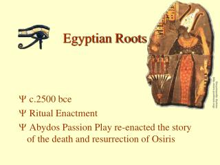 Egyptian Roots