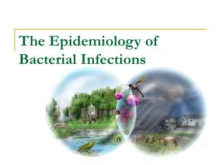 The Epidemiology of Bacterial Infections
