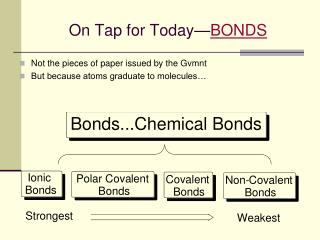 On Tap for Today— BONDS