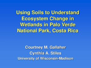 Using Soils to Understand Ecosystem Change in Wetlands in Palo Verde National Park, Costa Rica