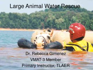 Large Animal Water Rescue
