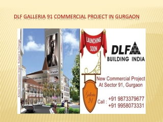 DLF Commercial Project Galleria 91 Gurgaon