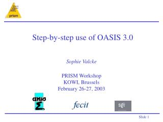Step-by-step use of OASIS 3.0