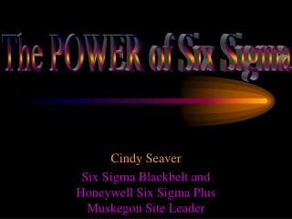Cindy Seaver Six Sigma Blackbelt and Honeywell Six Sigma Plus Muskegon Site Leader