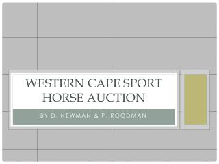 Western Cape Sport Horse Auction