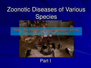 Zoonotic Diseases of Various Species
