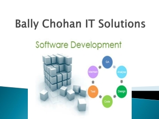 Bally Chohan IT Solutions UK