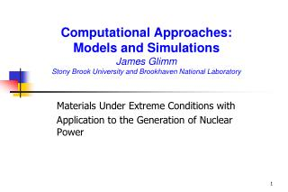 Computational Approaches: Models and Simulations  James Glimm Stony Brook University and Brookhaven National Laboratory