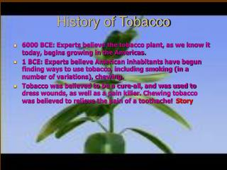 History of Tobacco