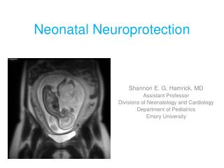 Neonatal Neuroprotection