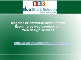 Magento ecommerce Development for boosting online business