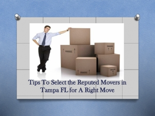 Hire Reputed Movers in Tampa FL