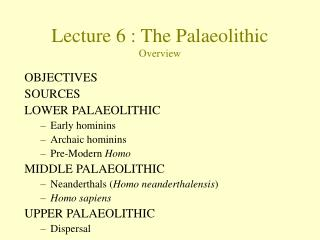 Lecture  6  :  The Palaeolithic Overview
