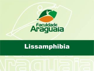Lissamphibia