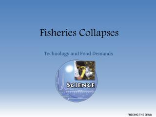 Fisheries Collapses